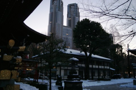 新宿中央公園の熊野社から東京都庁方面