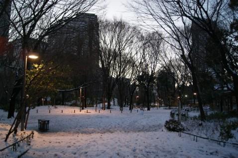 新宿中央公園から東京都庁第二庁舎方面